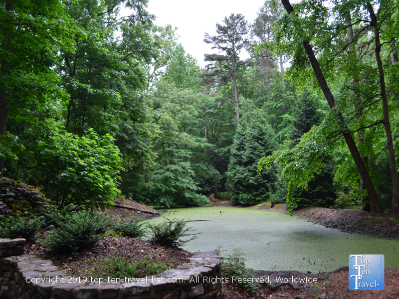 Serene views from Hatcher Garden and Woodland Preserve in Spartanburg, South Carolina