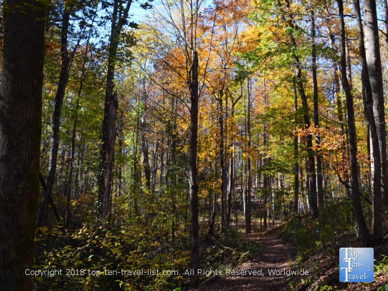 Fall foliage at Table Rock State Park in Upstate South Carolina