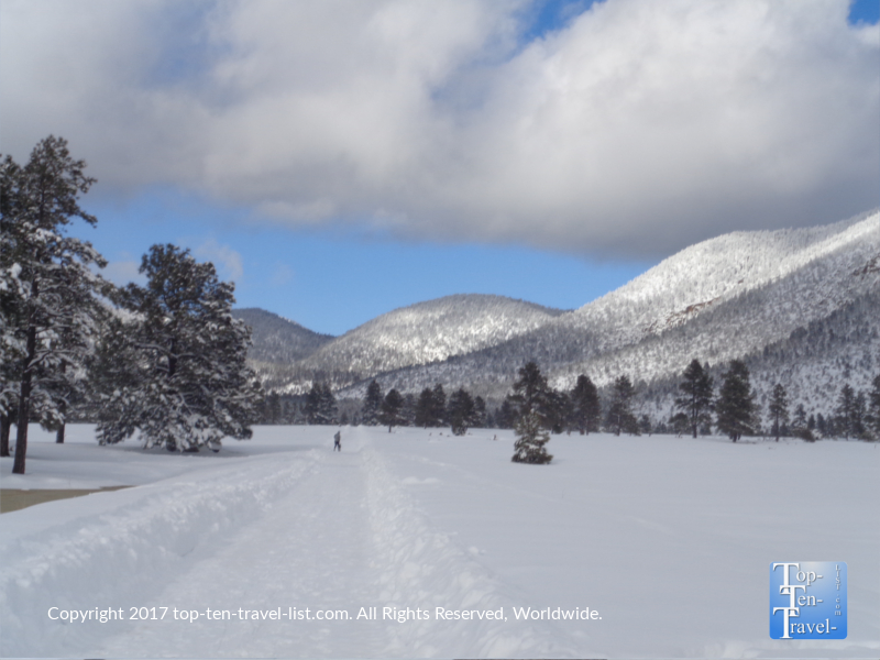 Snow covering Buffalo Park in Flagstaff, Arizona