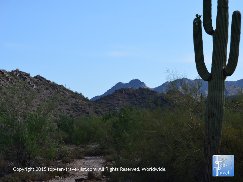 Beautiful trails at Scottsdale McDowell Preserve in Arizona