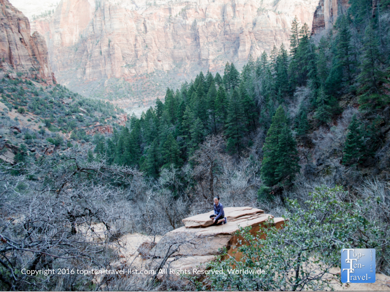 Incredible overlook along the Emerald Pools trail at Zion National Park