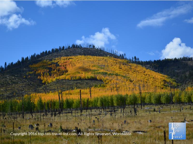 Bear Jaw trail fall foliage