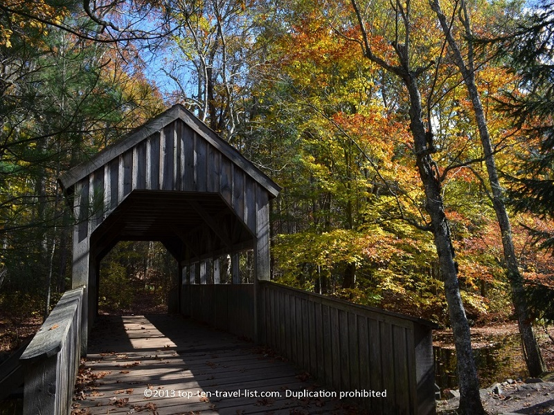 Coverage bridge surrounded by fall foliage at Devil's Hopyard State Park in Connecticut