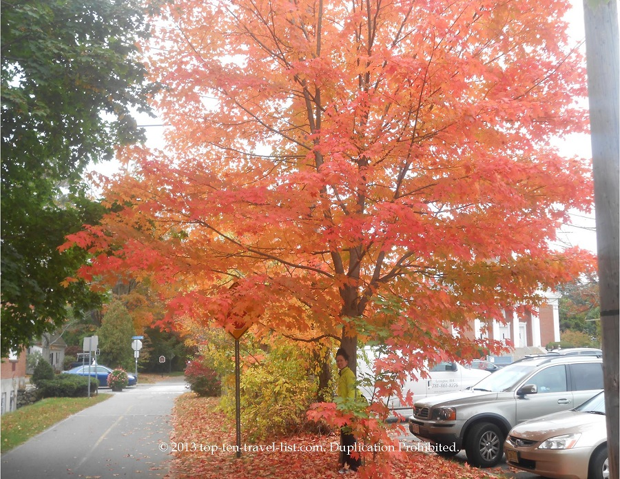 Bright fall foliage along the Minuteman Bikeway in Boston, Massachusetts