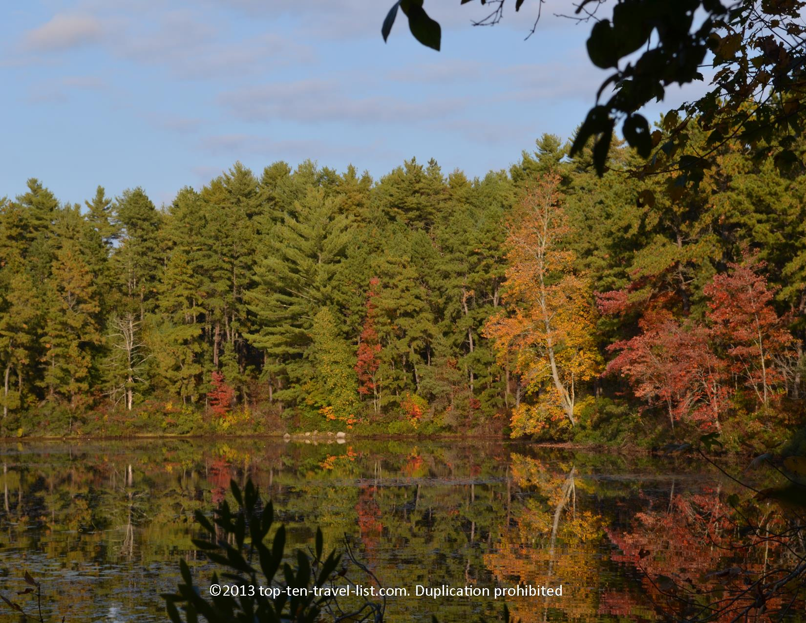 Beautiful fall scenery at Myles Standish STate Forest in Massachusetts