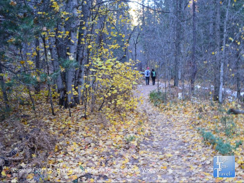 Hiking amongst golden foliage along the West Fork trail in Sedona, Arizona