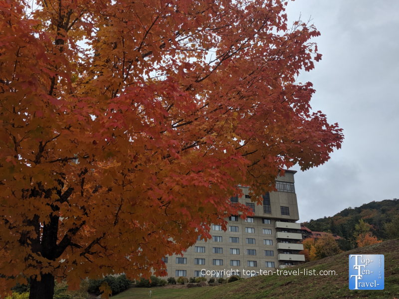 Fall foliage at the beautiful Omni Grove Park Inn in Asheville, North Carolina
