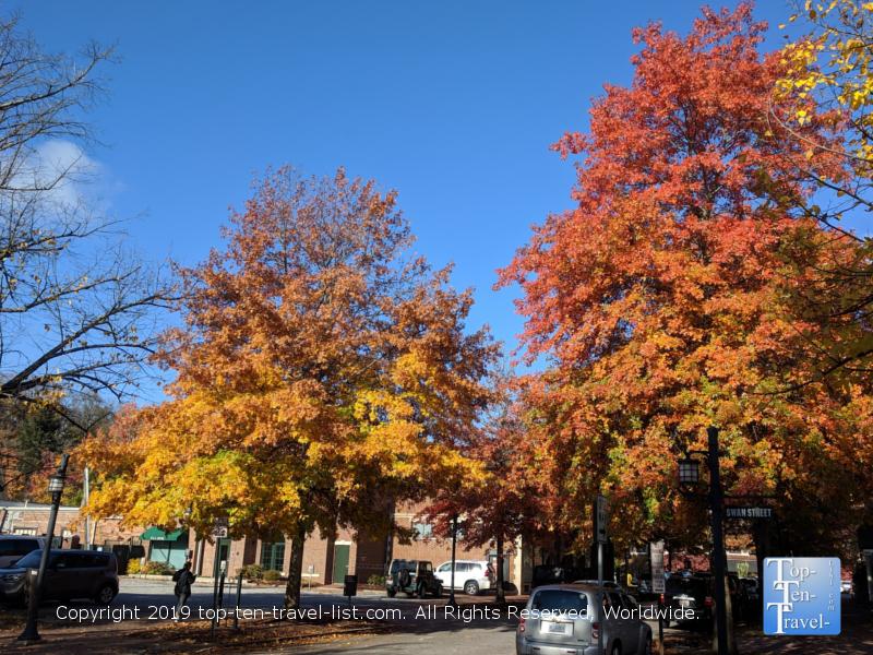 Fall foliage in Asheville, North Carolina