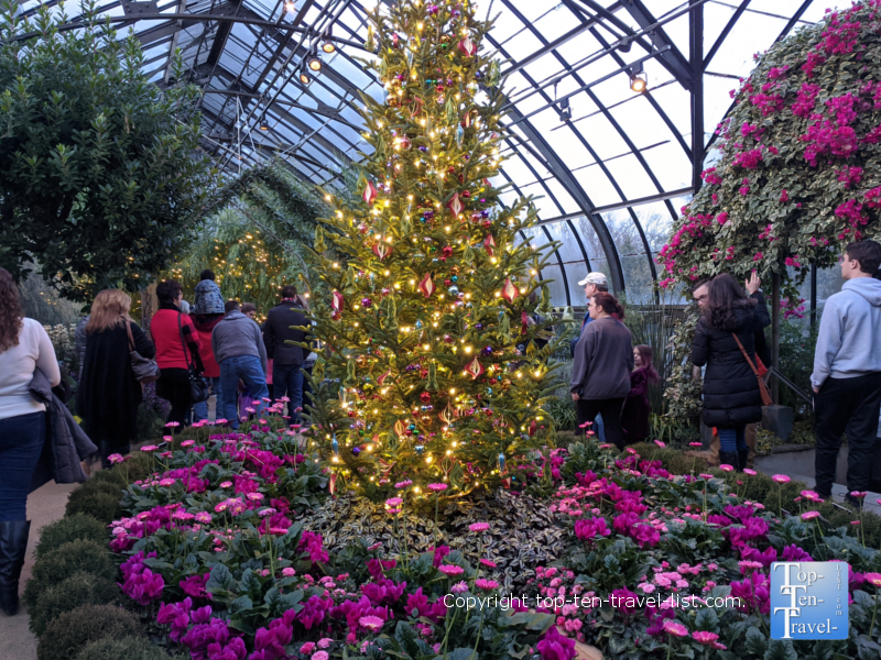 Festive Christmas tree surrounded by flowers at Longwood Gardens in Pennsylvania