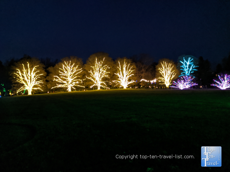 Festive holiday lights for A Longwood Christmas in Pennsylvania