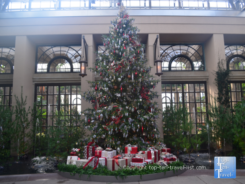 Grand Christmas tree in the Conservatory of Longwood Gardens in Pennsylvania