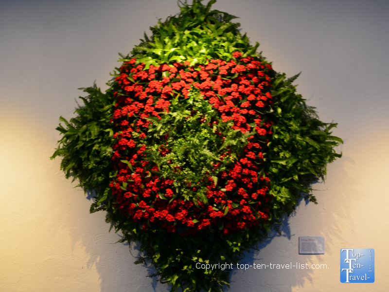 Festive wreath at Longwood Gardens in Pennsylvania