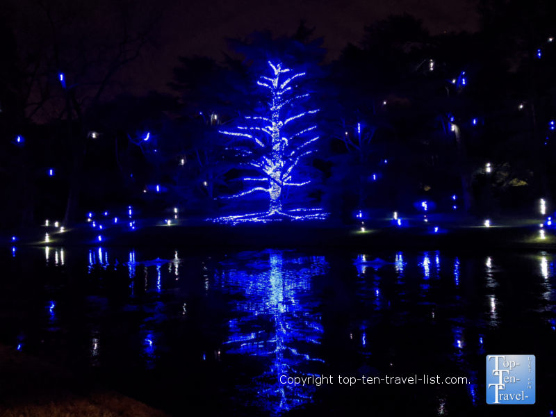 Lights on the Lake at Longwood Gardens in Pennsylvania
