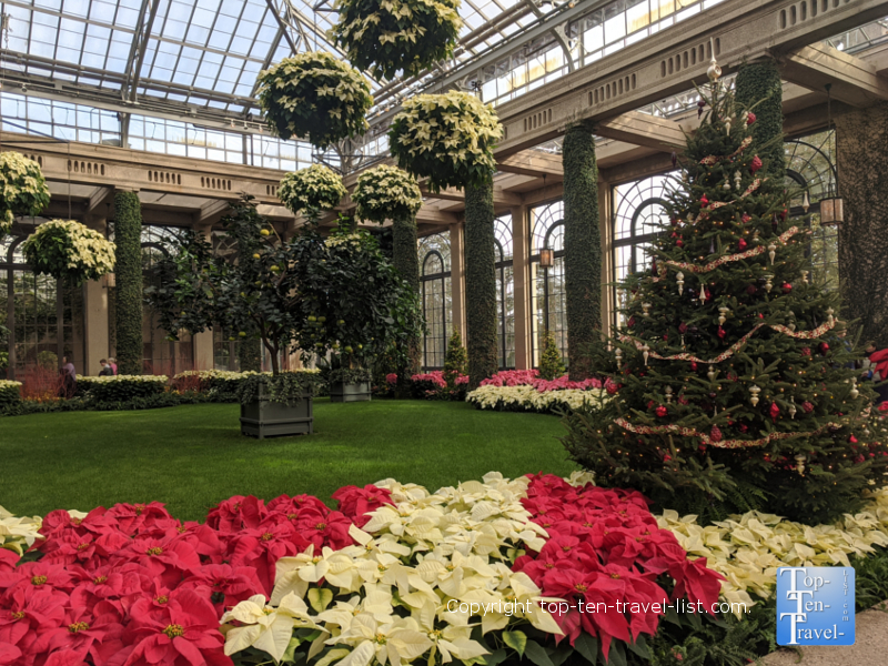 Festive decor and poinsettias at Longwood Gardens in Pennsylvania