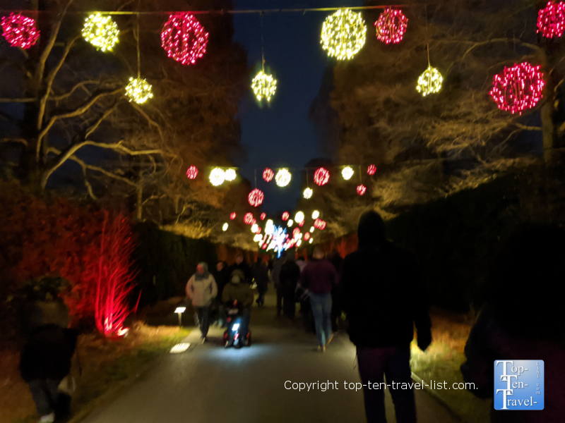 Festive tunnel of holiday lights during A Longwood Christmas in Pennsylvania