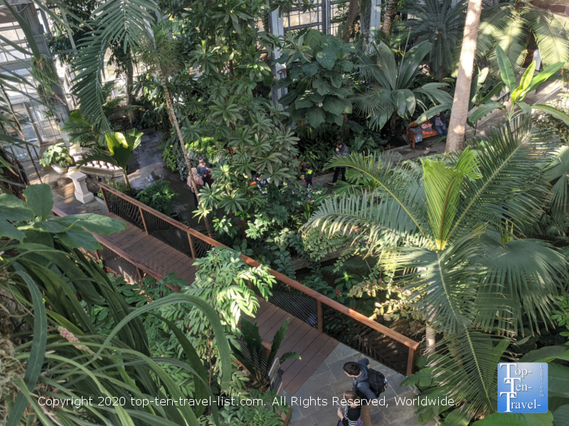 Exploring the tropical plant life at the US Botanic Garden in Washington D.C.