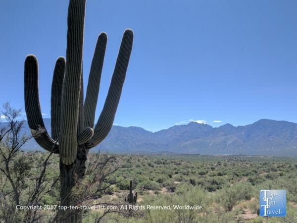 Picturesque scenery via the Honeybee Canyon trail in Oro Valley, Arizona