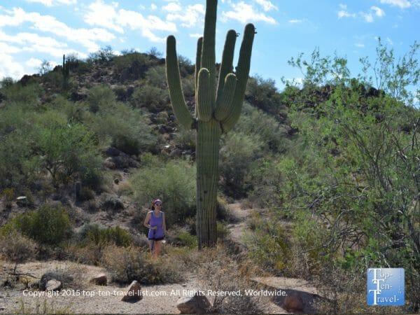 Hiking at the Scottsdale McDowell Sonoran Preserve in Arizona
