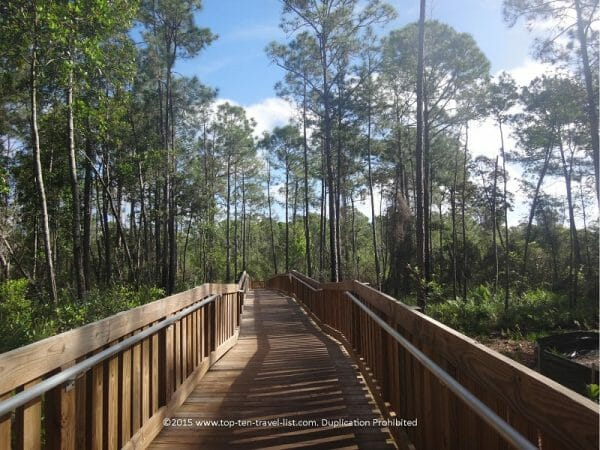 Beautiful trail at the Tibet Butler Nature Preserve in Orlando, Florida