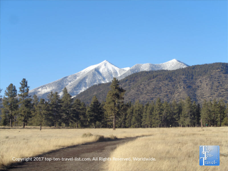 Gorgeous views of the San Francisco Peaks from the Nate Avery loop at Buffalo Park in Flagstaff, Arizona