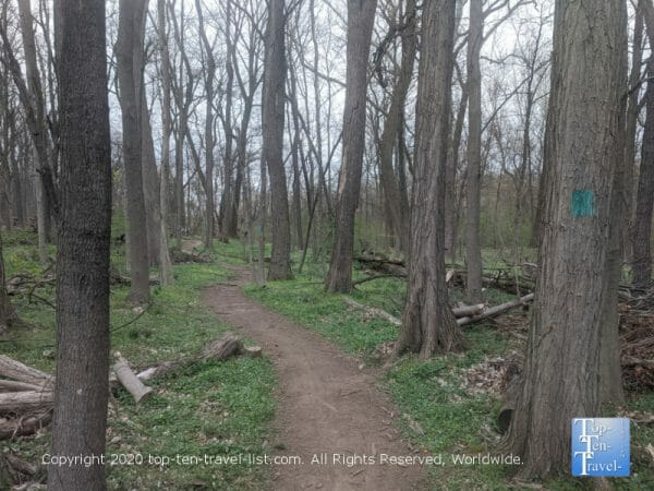 Hiking at Four Mills Nature Reserve in Ambler, PA