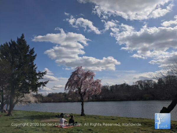 Quiet spring day along the beautiful Schuylkill River in Philadelphia's Fairmount Park