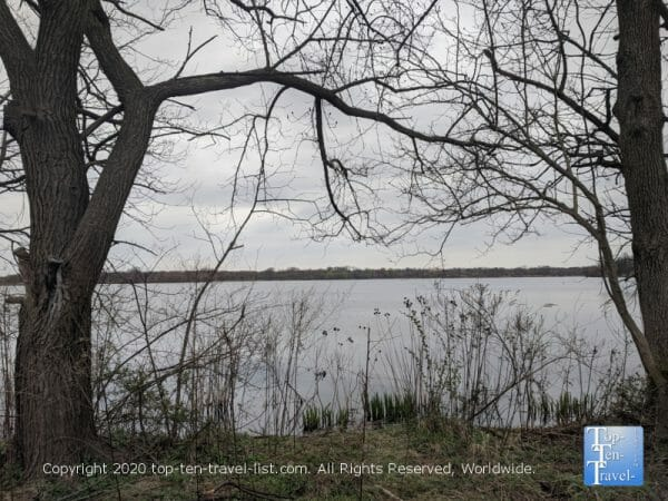 Tranquil scenery at John Heinz national wildlife refuge in Philadelphia