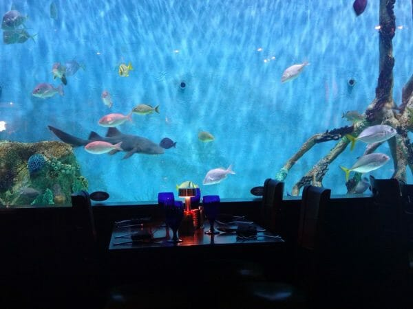 Giant aquarium at Rumfish Grill in St. Pete Beach, Florida