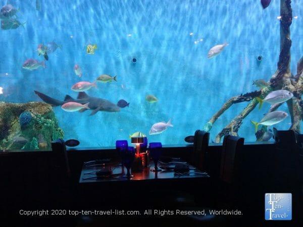 Massive aquarium at Rumfish Grill in St. Pete Beach, Florida