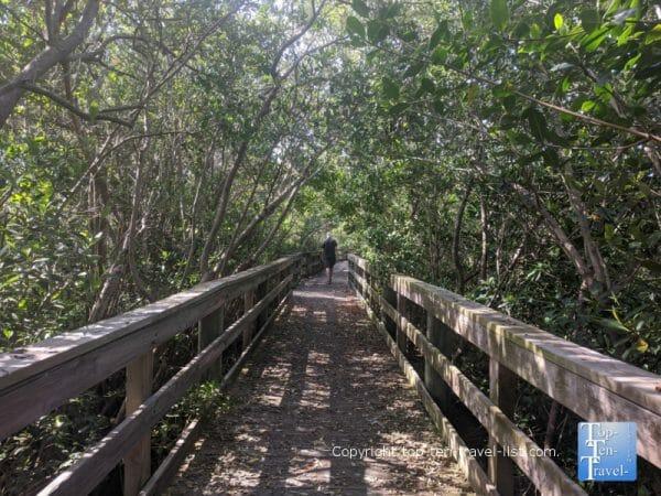 Boardwalk nature trail at Hammock Park in Dunedin, Florida