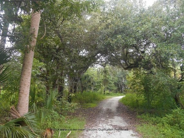 Nature trail at Boyd Hill Preserve in St. Petersburg, Florida