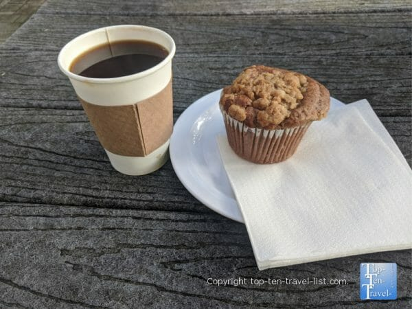 Gluten-free coffee cake muffin and Americano at Felicitous on 51st coffeehouse in Tampa, Florida