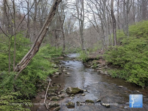 Tranquil creek scenery at Ft Washington State Park in Pennsylvania