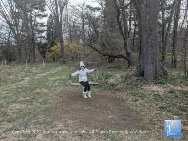 Tree swing at Natural Lands Saunders Preserve in Gladwyne, PA