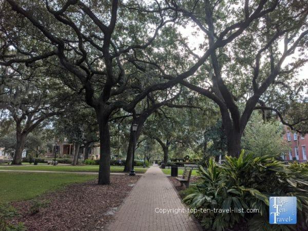 Beautiful Oglethorpe Square in Savannah, Georgia