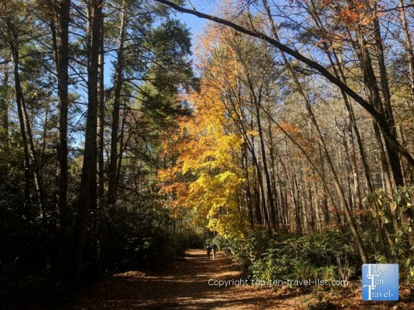 Beautiful fall color at Dupont State Forest in Western North Carolina