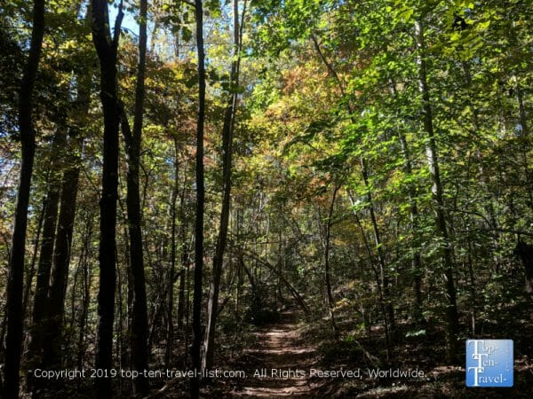 A tranquil fall leaf peeping walk at Paris Mountain State Park in Greenville, South Carolina