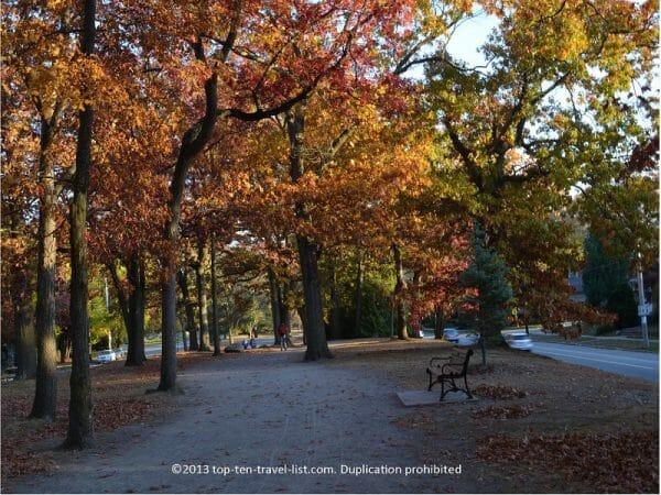 Gorgeous fall foliage along the Blackstone Blvd walking path in Providence, Rhode Island