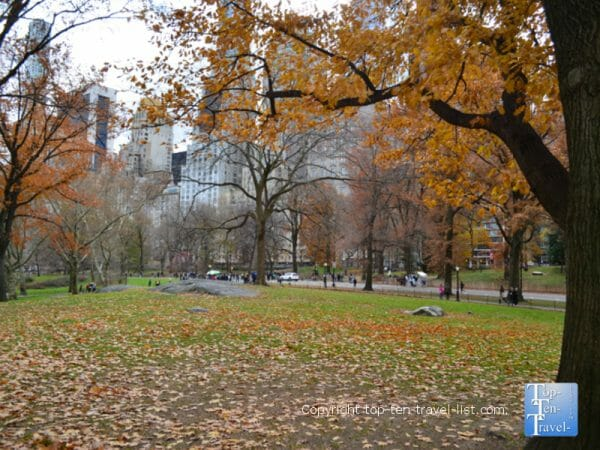 New York's Central Park during the beautiful fall season