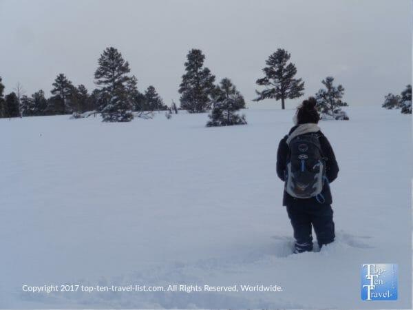 Buffalo Park after a massive snowstorm in Flagstaff, Arizona