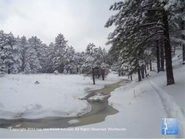 Snowshoeing through a winter wonderland in Pumphouse Wash near Flagstaff, Arizona