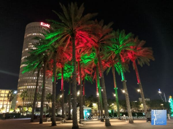 Festive Christmas palms in Tampa, Florida