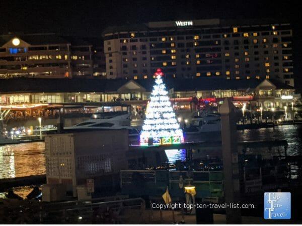 Floating Christmas tree along the Tampa Riverwalk