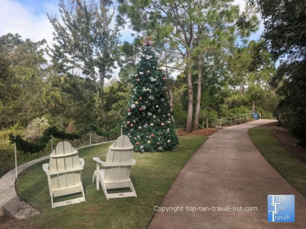 Christmas tree at Florida Botanical Gardens in Largo, Florida