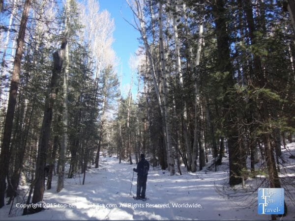 Snowshoeing along the beautiful Veit Springs trail in Flagstaff, Arizona