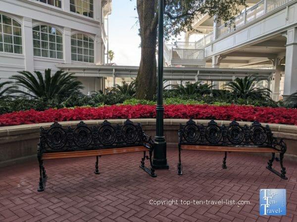 Festive poinsettias at Disney's Grand Floridian resort