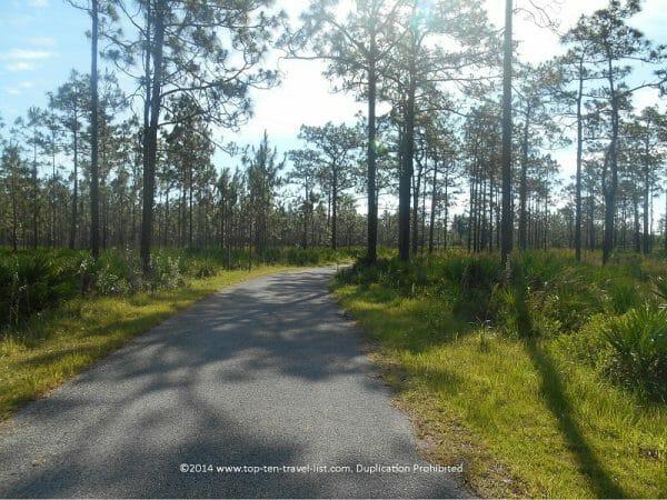 Jay B. Starkey bike path in New Port Richey, Florida