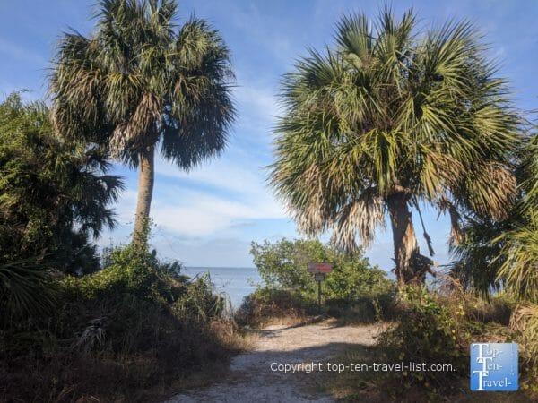 Pretty scenery at Key Vista Nature Park in New Port Richey, Florida