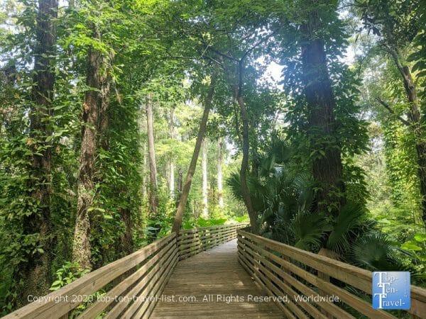 Eureka Springs preserve in Tampa, Florida