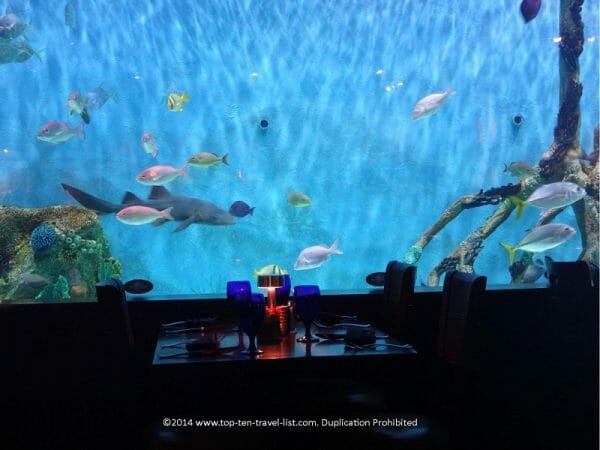 Aquarium from Tanked reality TV show at Rumfish Grill in St. Pete Beach, Florida